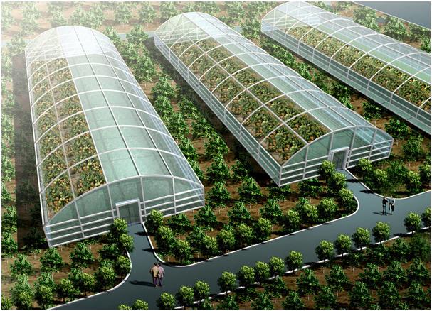 温室大棚智能化解决方案